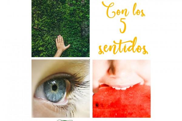 5 sentidos ateneo 3